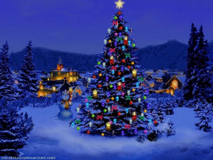 christmas-tree-nature-wallpaper